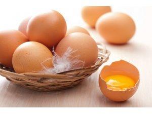 กินไข่ดีอย่างไร ?
